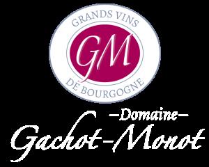 logo-DGM-light
